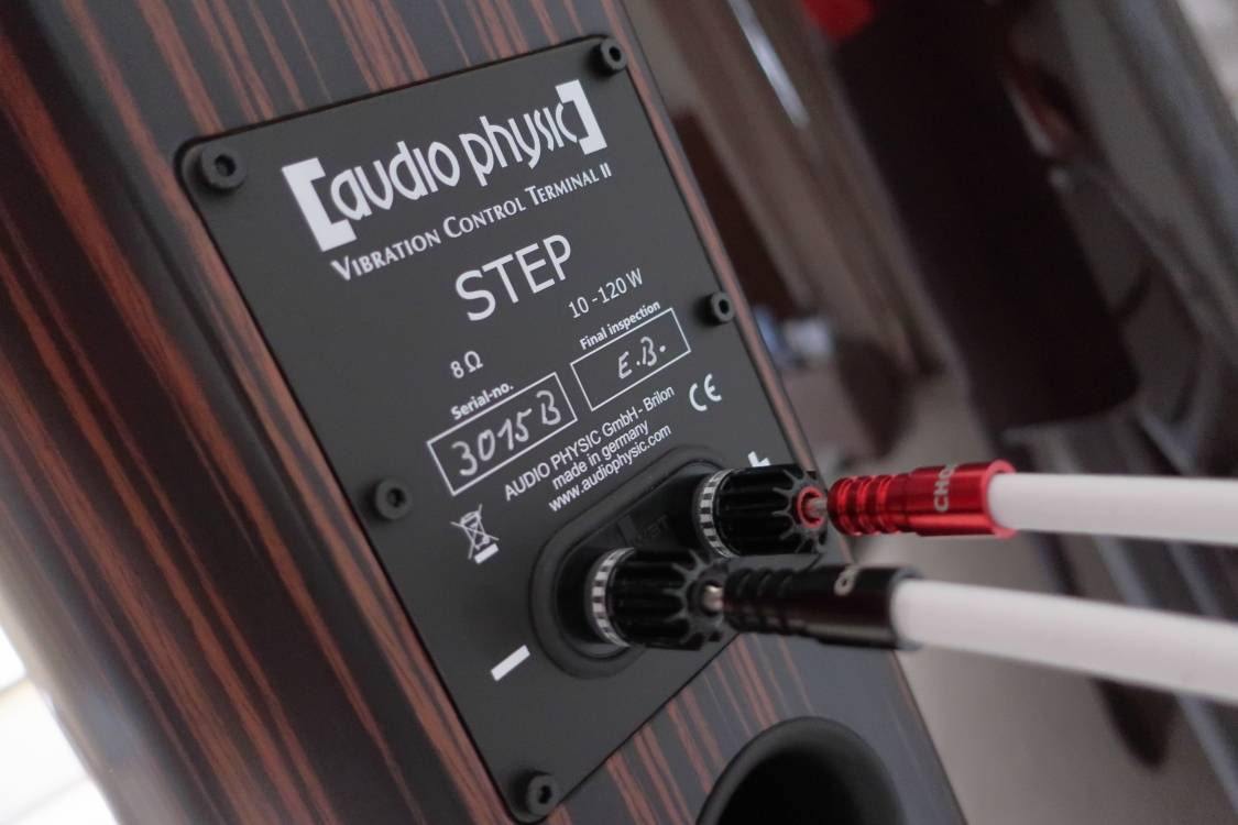2020 12 31 TST Audio Physic Step 35 12