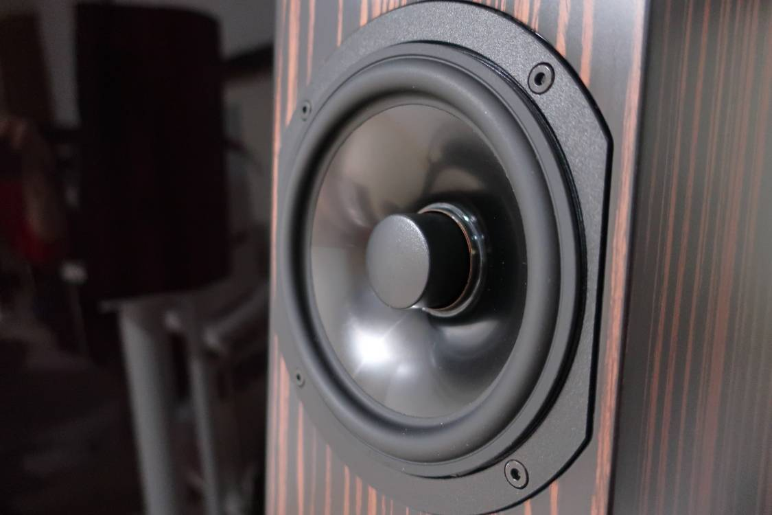 2020 12 31 TST Audio Physic Step 35 6